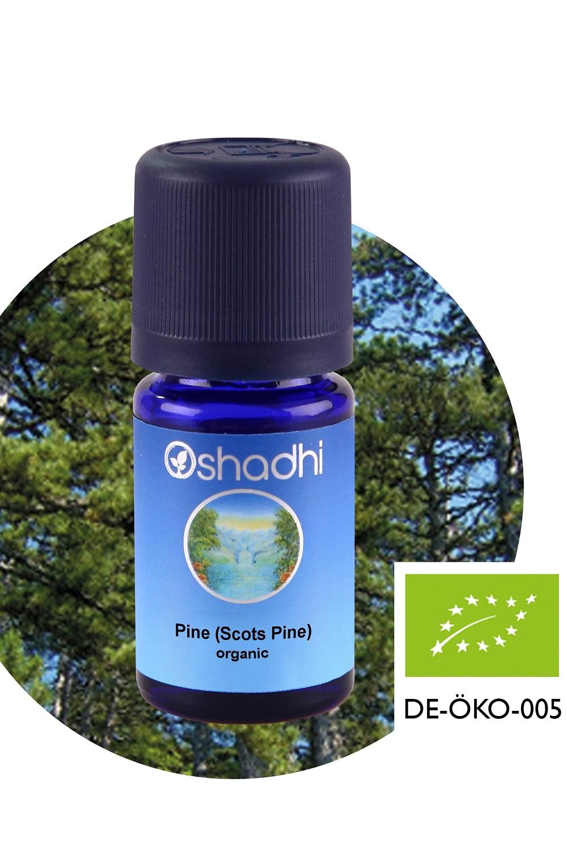 Pine20Scots20Pine20organic-1.jpg