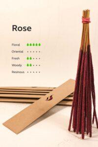 Klaarsus_Rose