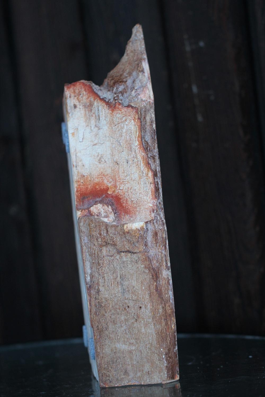 kauss-kivistunud-puit-klaarsus (4)