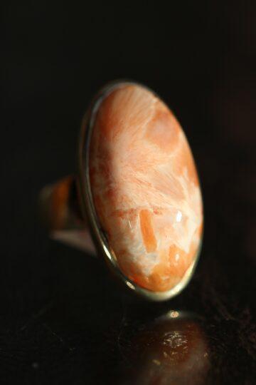 hobesormus-roosa-skolesiit-klaarsus-1